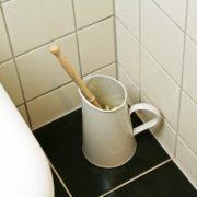 wc borstelset
