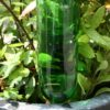 waterdruppelaar
